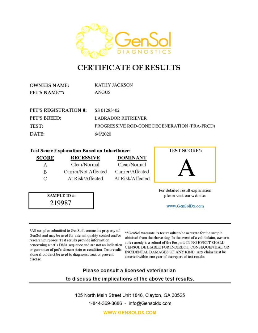 GensolResult219987-page-001.jpg