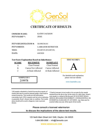 GensolResult219978-page-001.jpg