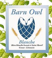 Barn Owl blanche.jpg