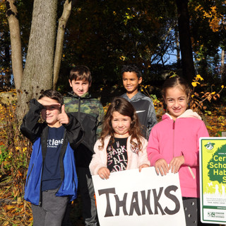 Native Woodland Project at Central –
