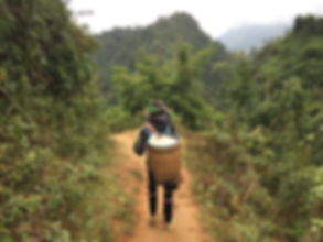 Trekking behind a local indiginous tribeswoman in Sapa, Vietnam
