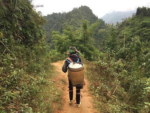 Trekking behind a local indiginous tribeswoman in Sapa, Vietnam