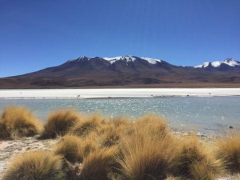 a lake and flamingos overlooking a mountain in the Uyuni Salt Flats in the Atacama Desert, Bolivia