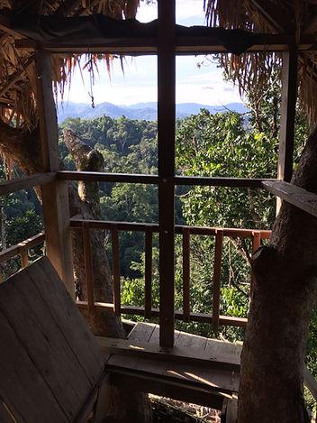 Treehouse at the Gibbon Experience near Huay Xai in Laos