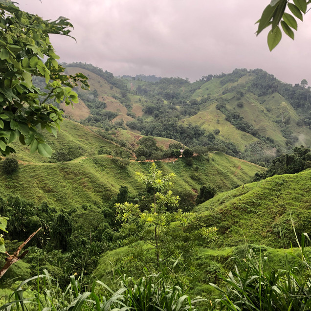 a beautiful photo of the rolling hills of Colombia in the Santa Marta region on the Lost City Trek