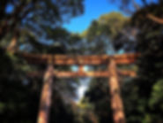 Yoyogi Park Gate in Tokyo