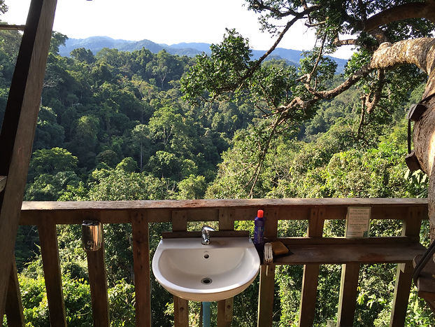 view from the bathroom of the treehouse at the Gibbon Experience near Huay Xai in Laos