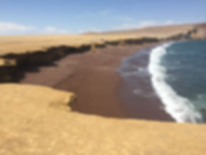 Red Sand Beach in Paracas Peru