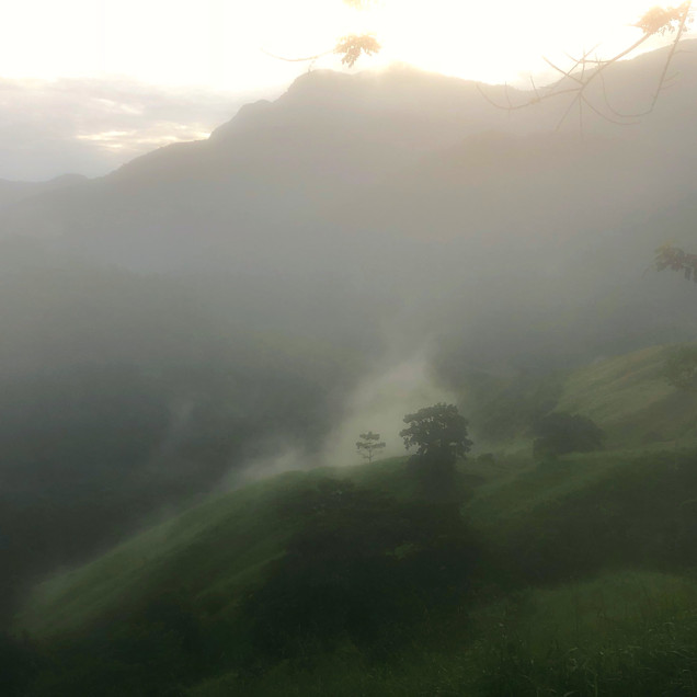 An ethereal and surreal photo of the jungles and mountains on the Lost City Trek in Colombia