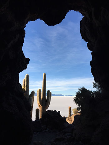 a cave and cactus on the altiplano at the Uyuni Salt Flats, Bolivia