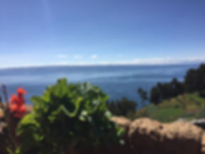 Beautiful plants and trees on Isla del Sol overlooking Lake Titicaca in Bolivia