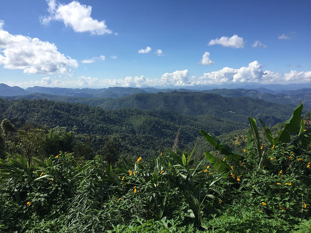 a view from a rest stop between Pai and Chiang Mai in Thailand with jungles in the distance