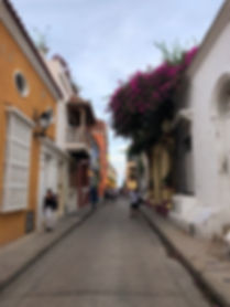a street in Cartagena Colombia with purple flowers