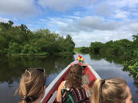 boating through the mangroves on the Pampas Rivebank in Rurrenabaque, Bolivia
