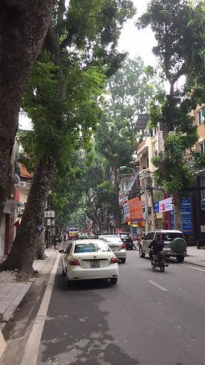 The tree-lined streets of Hanoi, Vietnam