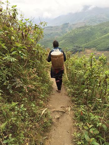 Followig an Indigineous tribe woman through the rice terraces in Sapa Vietnam