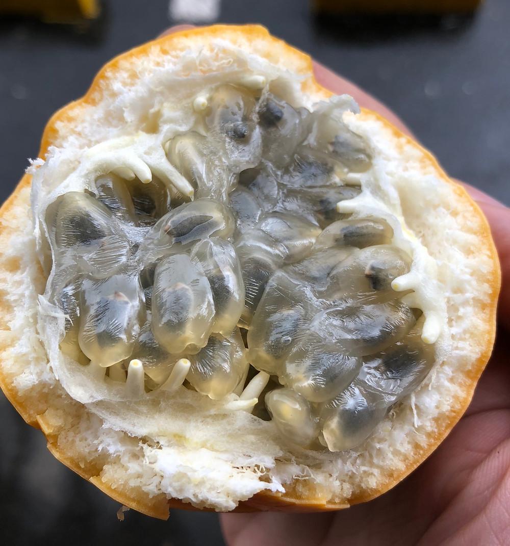 a half eaten granadilla from a street market in medellin colombia