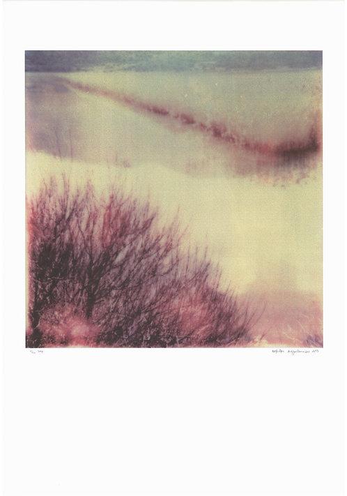 Alexandra Anagnostopoulou silkscreen print greek art buy online