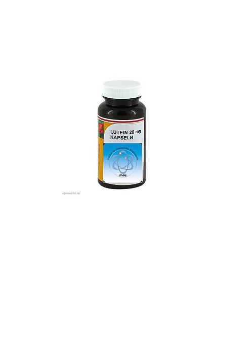 Bioverfügbares Curcumin-Phospholipid bei Entzündungen