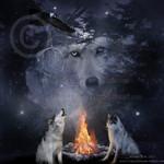 Sacred Council_by_UnlacedDreams.jpg