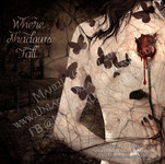 Where Shadows Fall ~ The Witch