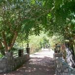 Scenic Path