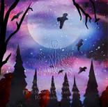 Magic Nights.jpg