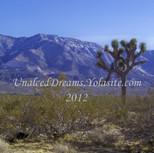 Scenic Desert Days