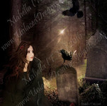 A Light Among the Graves