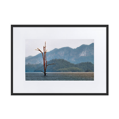 Natures Resiliance - Matte Paper Framed Poster With Mat
