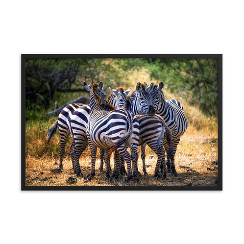 Intertwined - Framed photo paper poster