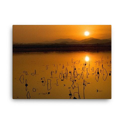 Natures Symmetry - Canvas