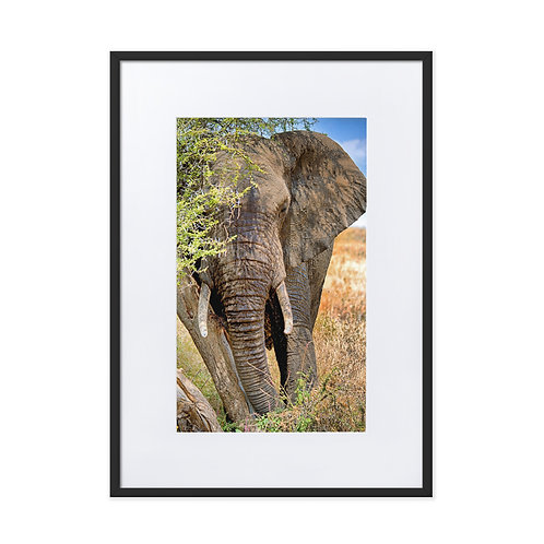 Peace Keeper - Matte Paper Framed Poster With Mat