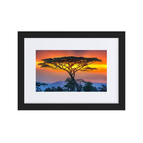 African Fire Sunset - Matte Paper Framed Poster With Mat