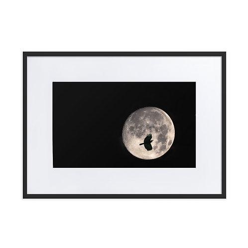 Moon Peek - Matte Paper Framed Poster With Mat