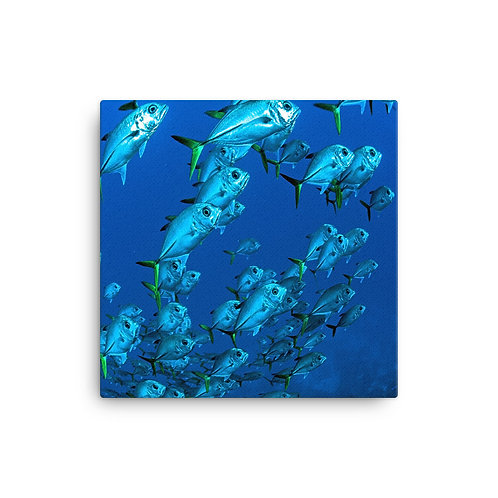 Electric Fish - Canvas