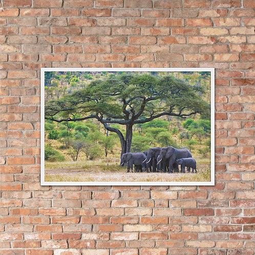Natures Blessing - Framed photo paper poster