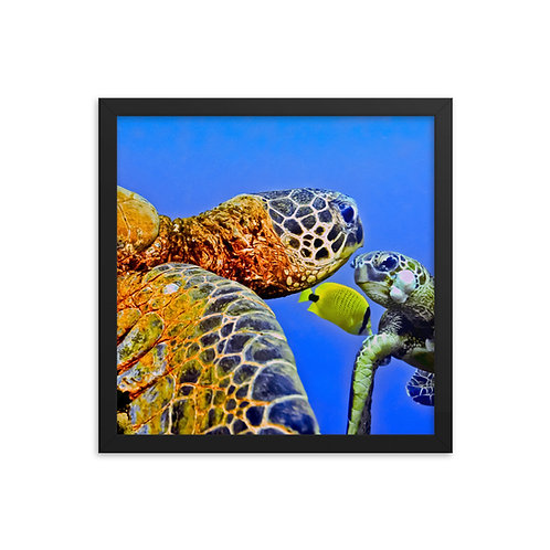 Ocean Family - Framed photo paper poster