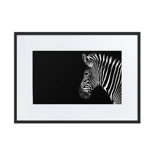 Mr. Whiskers - Matte Paper Framed Poster With Mat