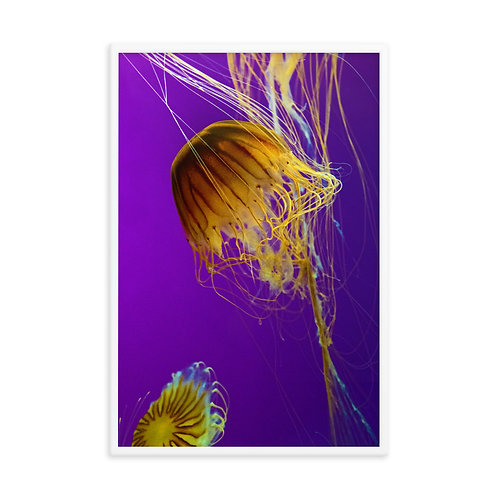 Lava Water - Framed photo paper poster