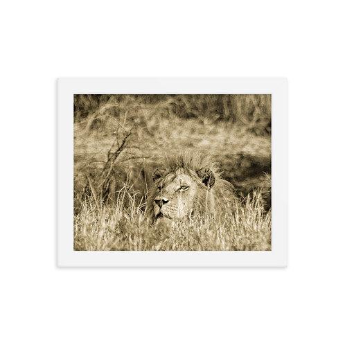 Secret Escape - Sepia - Framed photo paper poster