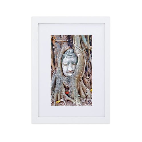 Buddha Birthplace - Matte Paper Framed Poster With Mat