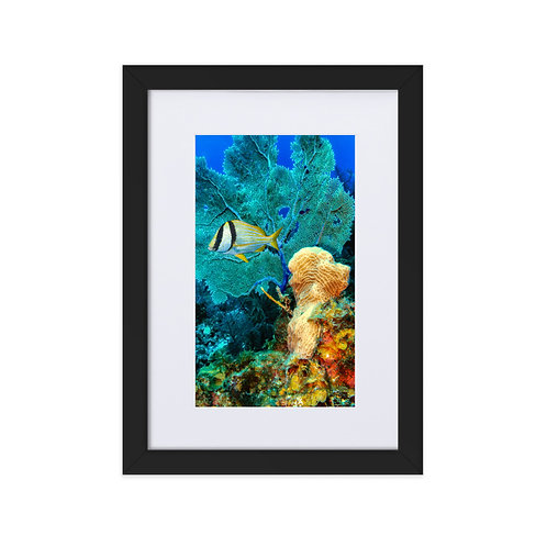 Fire Underwater Matte Paper Framed Poster With Mat