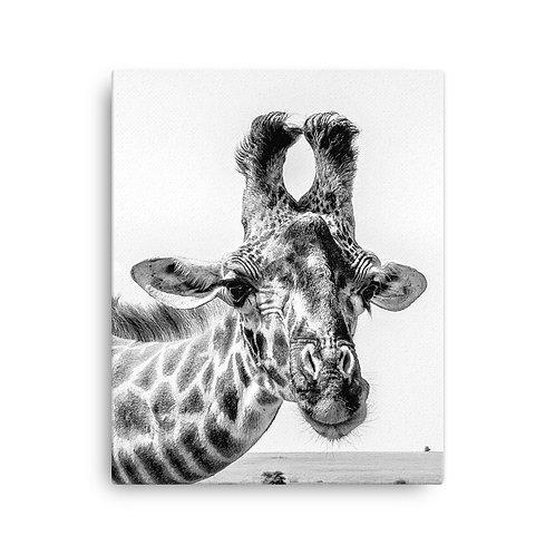 Flirty Giraffe -  Black & White Canvas
