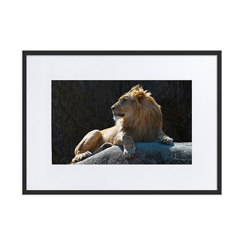 The One and Only - Color Matte Paper Framed Poster With Mat