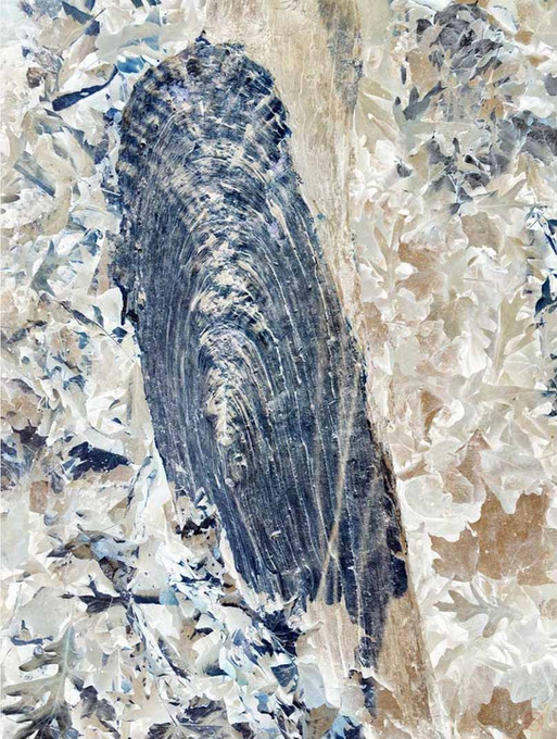 Nature's Thumbprint