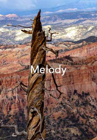 Melody Cover.jpg