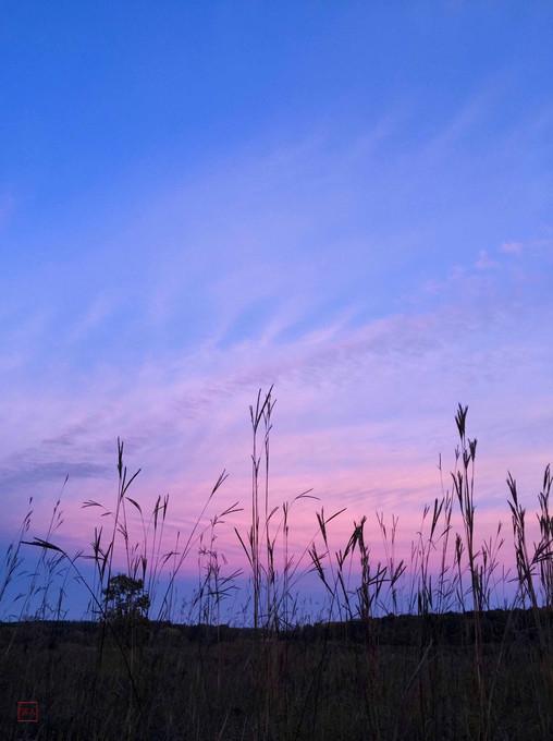 Curtis Prairie Sunset #2