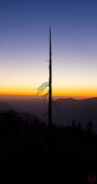 Sentinel (Yosemite National Park)