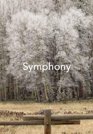 Symphony Cover.jpg